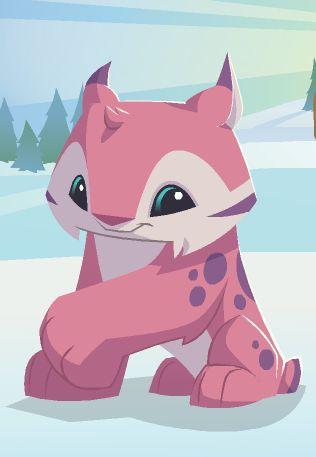 Cute Penguin Mac Wallpaper 10 Best Animal Jam Rox Images On Pinterest Animal Jam