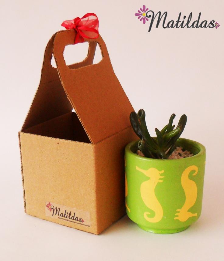 Matilda Tipo 2: Materita verde manzana y amarillo pastel de 8x6,5 cm., con suculenta.