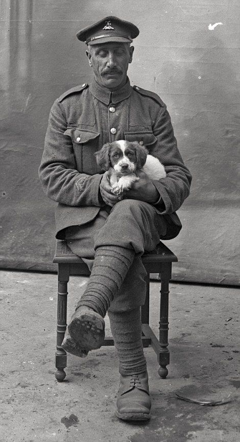 A soldier holds a puppy as he has his picture taken