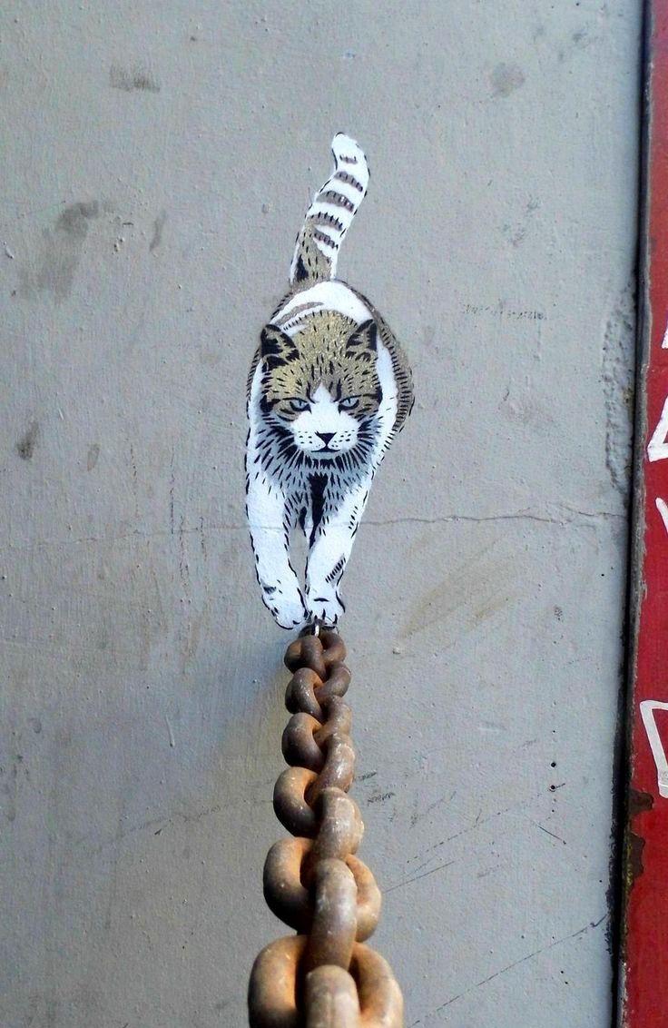 Guardiamo solo un gatto e la sua coda o osserviamo che l'equilibro è un'arte che va esplorata? Anche sul #lavoro...