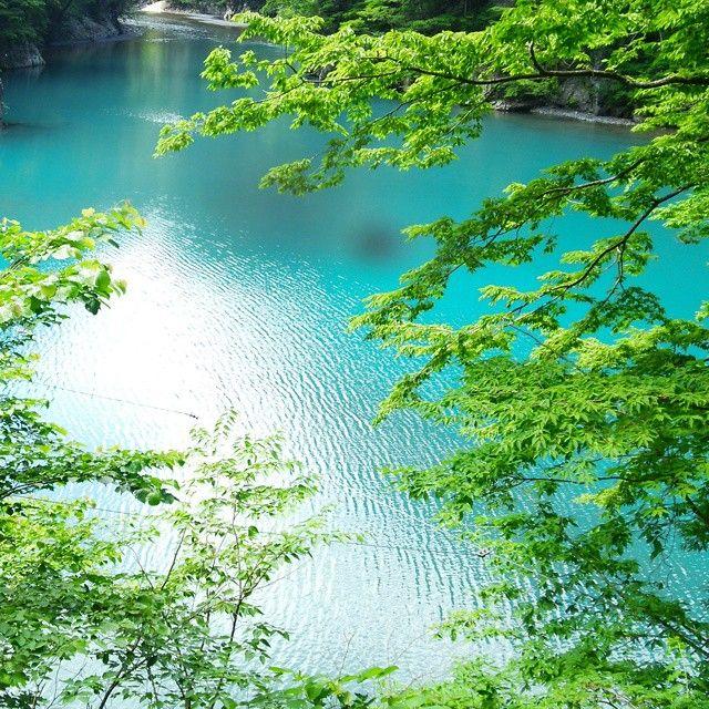 寸又峡 寸又峡温泉 on Instagram 大井川鐵道 #寸又峡温泉 #夢の吊り橋 吊り橋はとても怖かっ