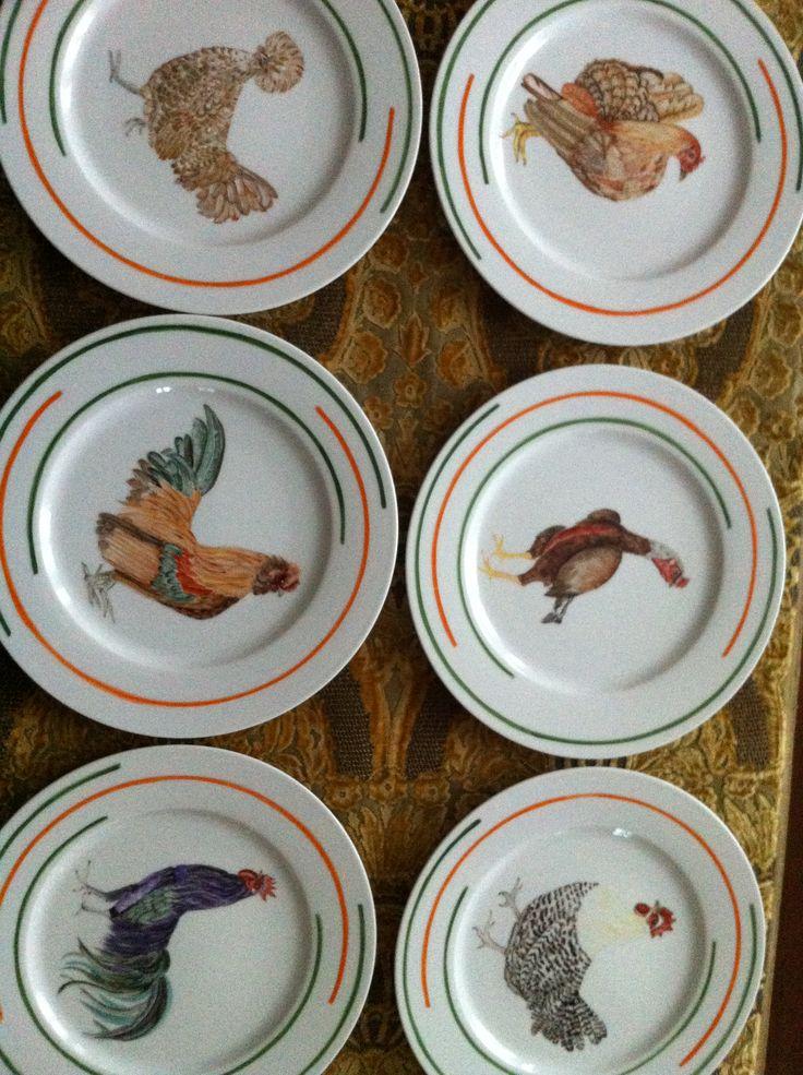 serie poules par C.Molle