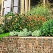 Behind the brick retaining wall, which the couple had repointed, is a lush front yard. Taking cues from Victorian-era gardens, Jeffrey planted perennials that need little water, such as black-eyed Susan, coneflower, guara, aster, heather, lavender, rosemary, thyme, creeping phlox, cardinal flower, and castor bean. Only in July, when the sun is very intense, does he need to supplement the collected water that the new rain barrels supply.
