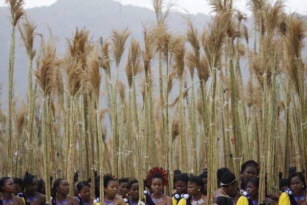 Grognards: La danza delle giovani donne di Swaziland
