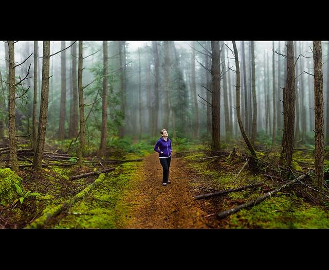 Through the fog | Flickr: partage de photos!