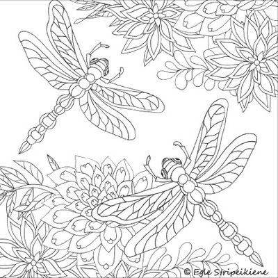 flowers and dragonflies coloring pages | 1650 best images about Coloring pages first edition on ...