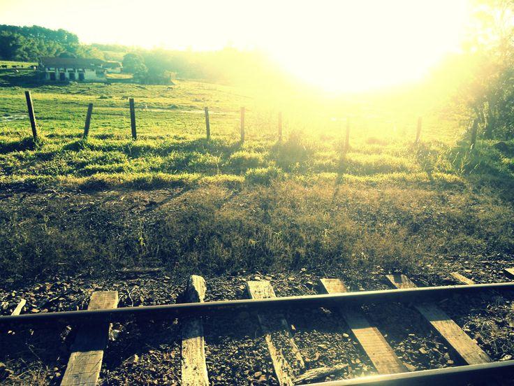 The train tracks