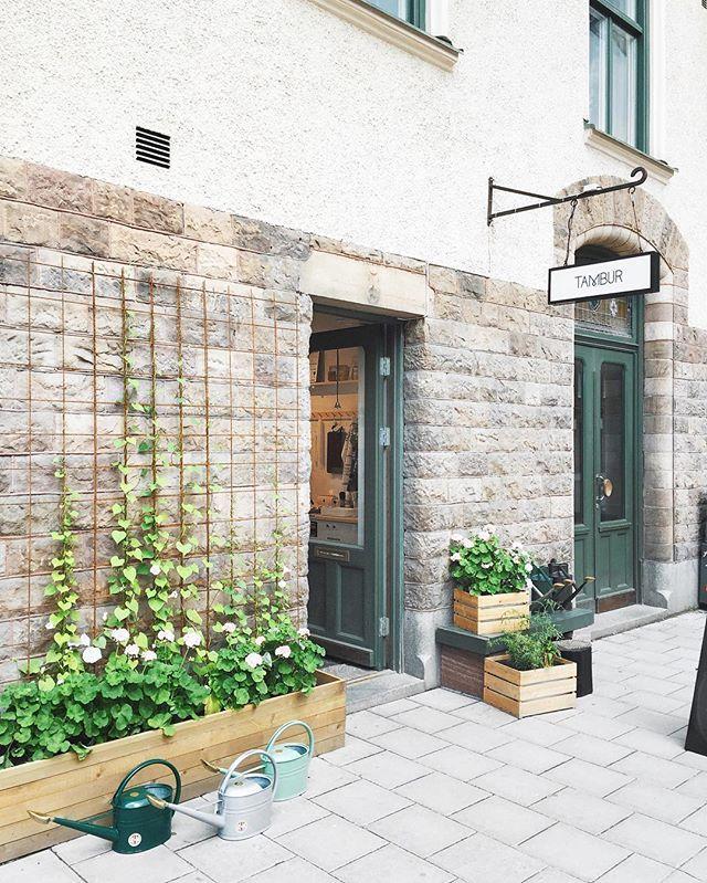 Mårbacka-plantering utanför butiken  #tambursthlm