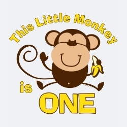 Little Monkey 1st Birthday Boy Infant T Shirt Little
