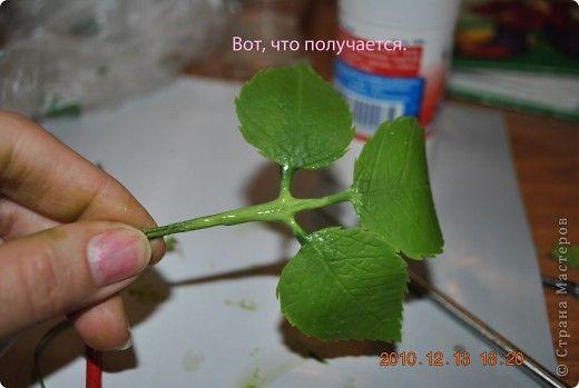 Мастер-класс Лепка МК по лепке розы Часть3-веточки Фарфор холодный фото 11