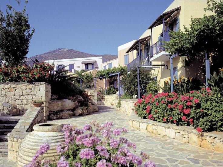 Vacante Vara 2013 - SILVA BEACH 4*,14NP. Calatorie la Creta, Hersonissos, oferte Paravion