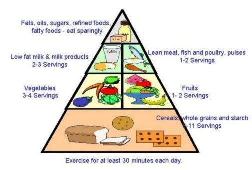 Rebuilding food pyramid
