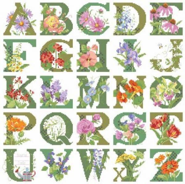 Alphabets Images On Pinterest