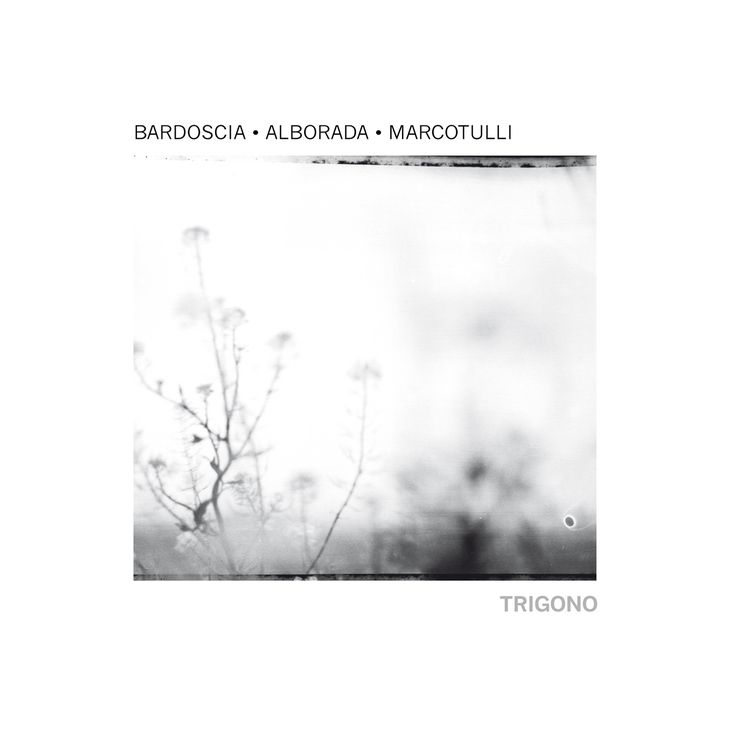 front cover graphic design  CD album TRIGONO [bardoscia • alborada • marcotulli] edited by © Tǔk Music 2015