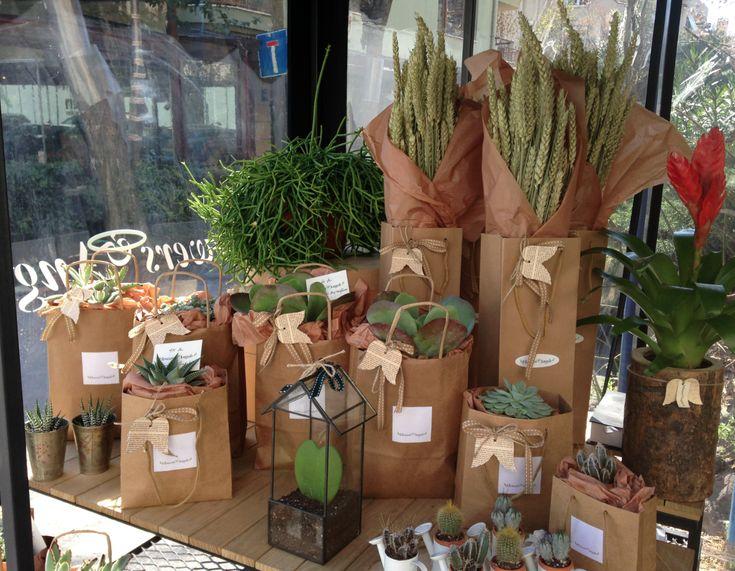 florist, flowers, succulents, gift, package, packaging