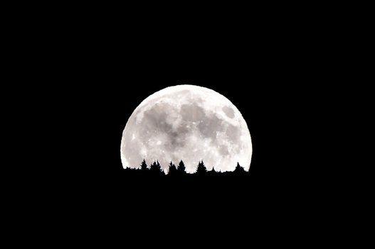 La superluna se ha convertido en un fenómeno excepcional de las noches de este verano que ya hemos podido contemplar un par de veces. Son muchos los que salen a las calles a buscarla y fotografiarla (...