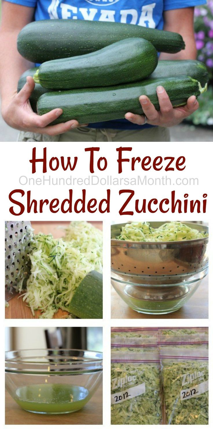 How To Freeze Shredded Zucchini, How to Freeze Zucchini