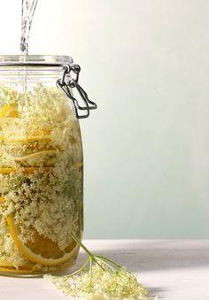 Holunderblütensirup - Rezepte mit Holunderblüten - 1 - [ESSEN & TRINKEN]