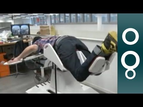 See, feel and smell the world like a bird with Birdly flight simulator - YouTube