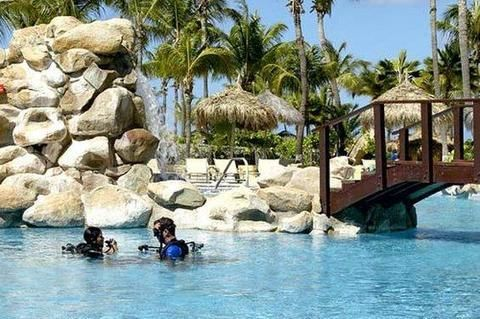 World Hotel Finder - Occidental Grand Aruba All Inclusive