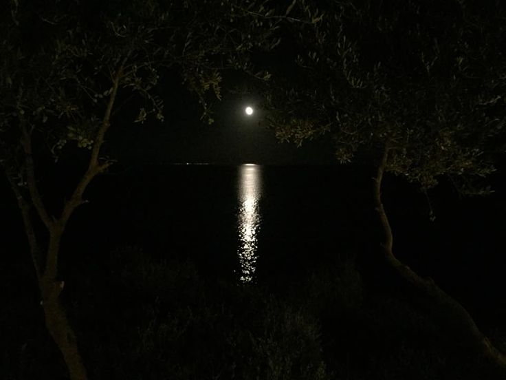 Moon view from our restaurant #Halkidiki #Greece #Restaurant #greeksummer #portovalitsa http://portovalitsa.gr/