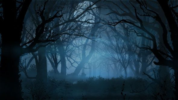 Halloween Forest Background