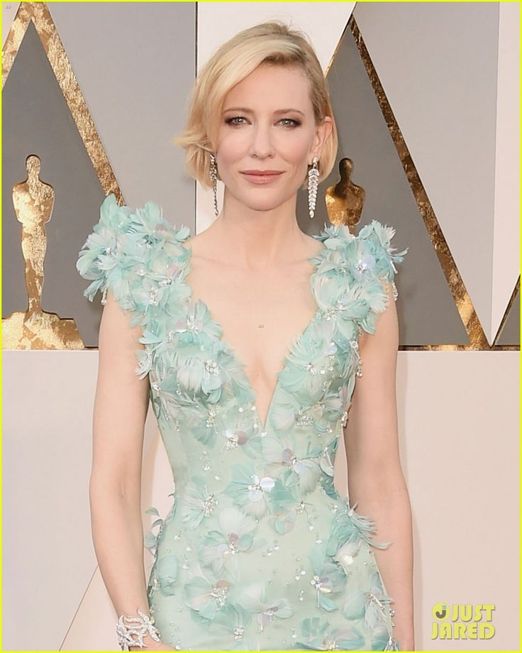 Cate Blanchett Stuns in Feathered Gown at Oscars 2016 | cate blanchett oscars 2016 red carpet 02 - Photo