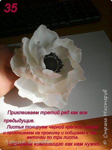 МАСТЕР КЛАСС БЕЛОГО МАКА ИЗ ФОАМИРАНА! фото 36