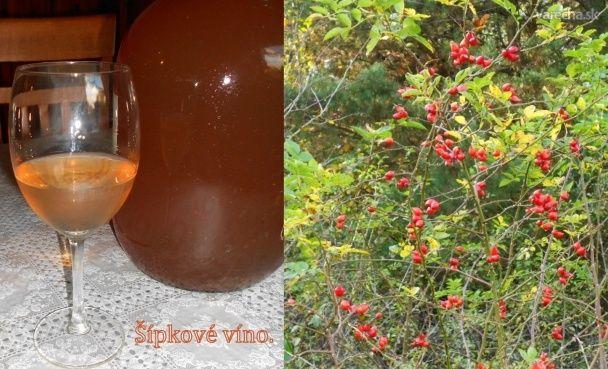 Šípkové víno (fotorecept)