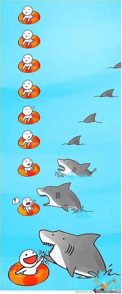 Dun Dun . . . Dun Dun . . HAY! Welcome to Shark Week – the best kind of week.