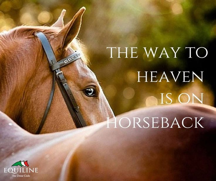 The way to Heaven is on horseback.