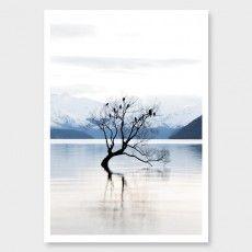 That Wanaka Tree Photographic Art Print by Jenna Smith