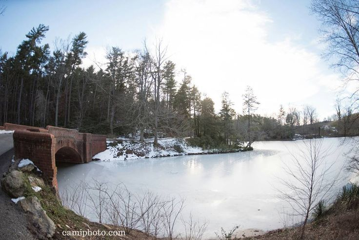 17 best images about biltmore estate ashville nc on for Bass pond construction