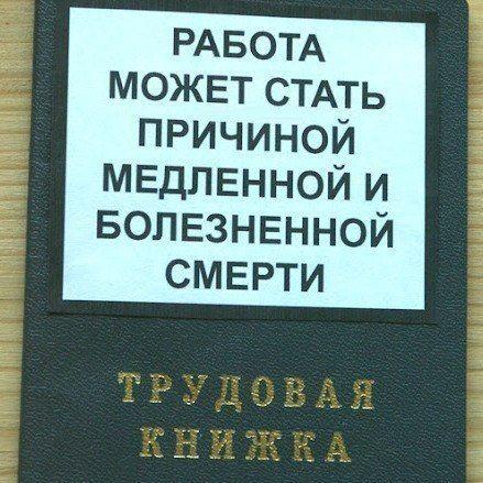 Фабрика приколов. трудовая #книжка