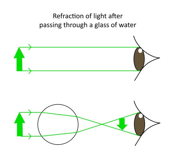 reflection and refraction experiment essay Free refraction papers, essays physics of water waves - all waves possess the properties of reflection, refraction the experiment is carried out in.