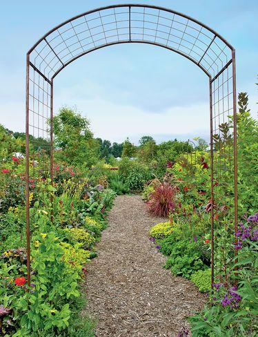 1000 ideas about rose trellis on pinterest trellis - Garden arch climbing plants ...