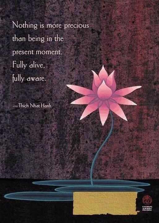"""""""Nothing is more precious than being in the present moment. Fully alive, fully aware."""" - Thich Nhat Hanh"""