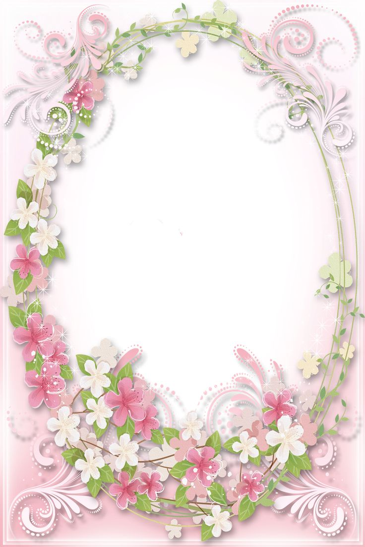 Transparent Soft Pink Flowers Frame
