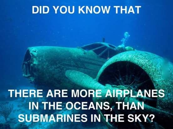 You learn something new everyday   http://ift.tt/1Tr4a0D via /r/funny http://ift.tt/1XBSo5j  funny pictures
