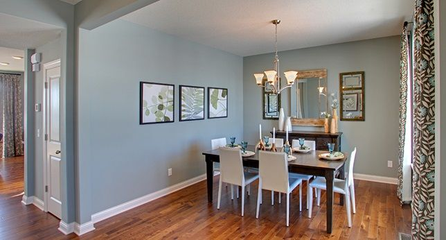 Unusual Gray Sw 7059 Paint Color Dr Horton Home Pinterest Minneapolis And Decorating