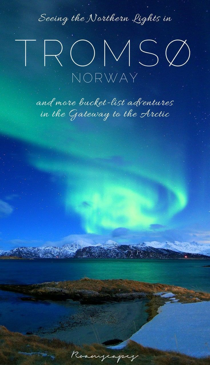 Chase the Northern Lights #aurora in #Tromsø #Norway, and you'll discover even more bucket-list experiences: dog sledding, whale watching, kayaking through fjords, and so much more.