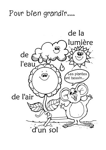 Summer Kids Worksheet; Simple French Words On What Plants Need to Grow.... Sun, Water, Oxygen. Did You Say the Words Right? Then Color the Matching Word/ Picture. Well Done!...a petit bisou, to you ;- D