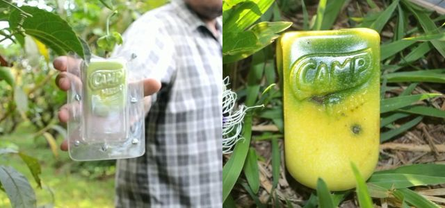 F'in brilliant!!! In Brazil, ad campaign brands fruit with special molds