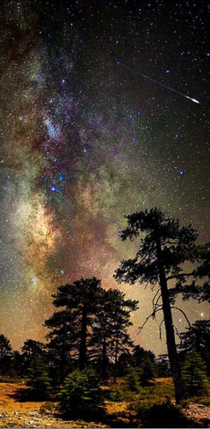 The Milky Way, Cyprus. Stunning.