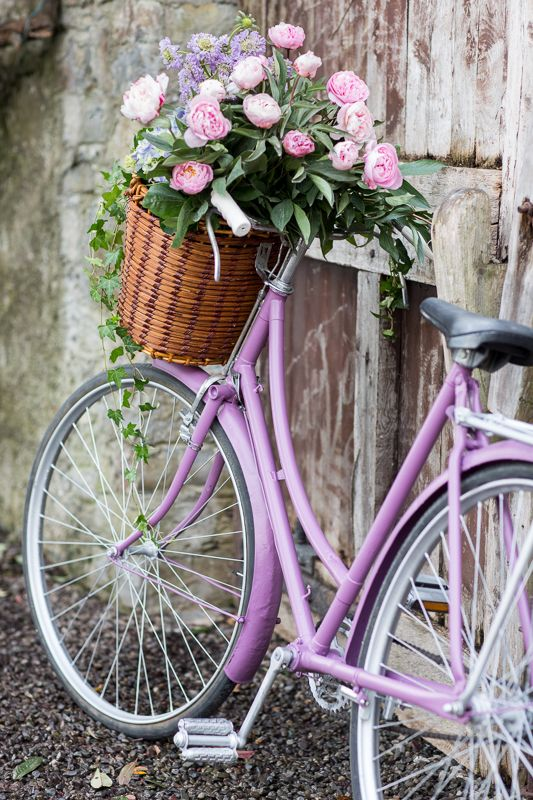 Repurpose an old bike with Purple Berry from Ronseal's garden paint range! #SummerLovin