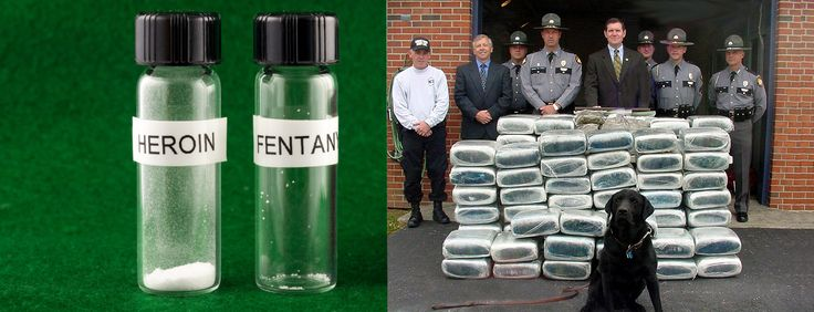 Lethal doses of heroin, fentanyl, and marijuana side by side.FriesWithThat - http://asianpin.com/lethal-doses-of-heroin-fentanyl-and-marijuana-side-by-side-frieswiththat/