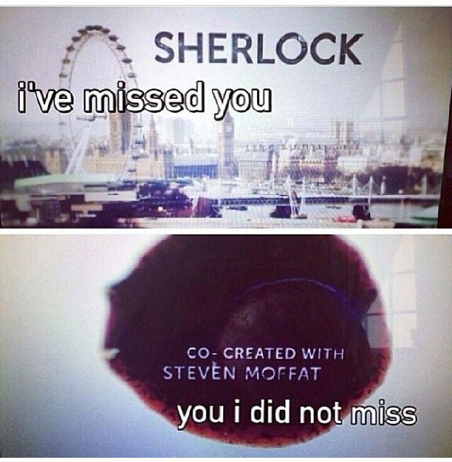 Ugh, Steven Moffat.....he almost kills us with our tears.