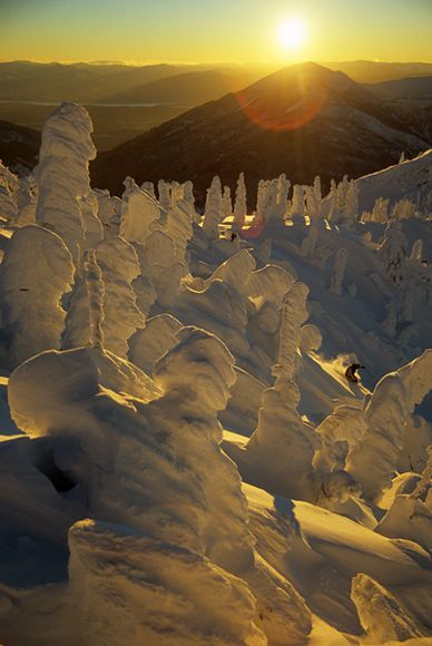 Snow totems? Fernie, BC, Canada.