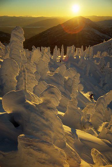 Snow totems? Fernie, BC, Canada.: Photos, British Columbia Canada, Skiing, Mountain, Camera, Beautiful, Ferni, Places, Britishcolumbia