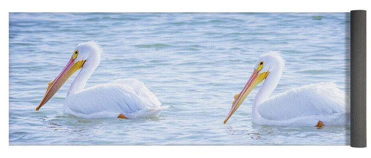 """American White Pelican Couple Yoga Mat by Debra Martz.  This yoga mat is 24"""" x 72"""" in size and made from eco-friendly PVC.  It comes with black carrying bag and a 30-day money-back guarantee. #american #pelicans #waterbirds #birds #blue #water #yoga #mat"""